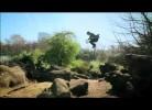Didier Drogba em videoclip