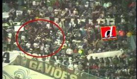 Vídeo que mostra o petardo que matou adepto na Libertadores